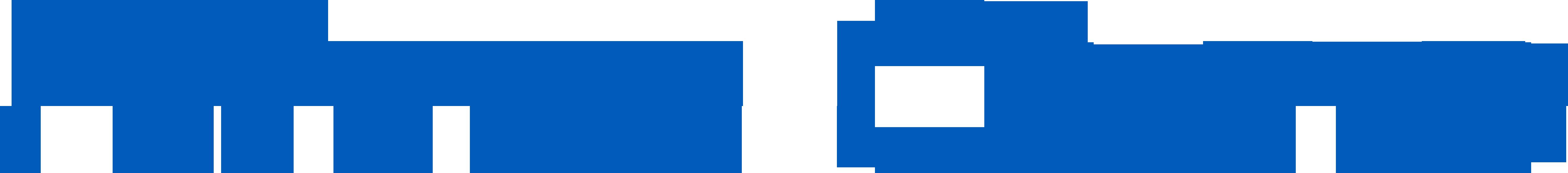 Logo Nano Quad